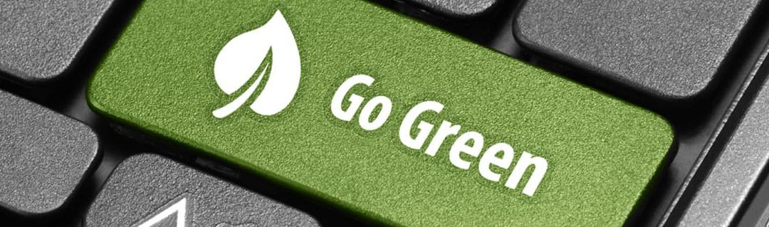 A guide to going green for start-ups